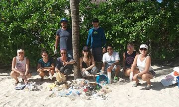 Beach Clean-up September