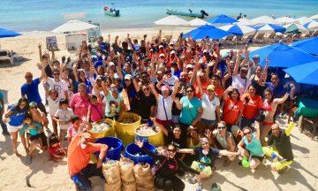 Beach Clean-up November