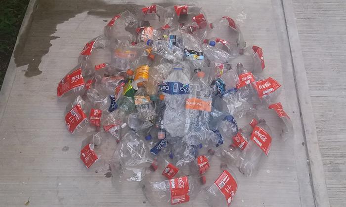 botellas pet lavadas y enviadas a 4ocean karla munguia