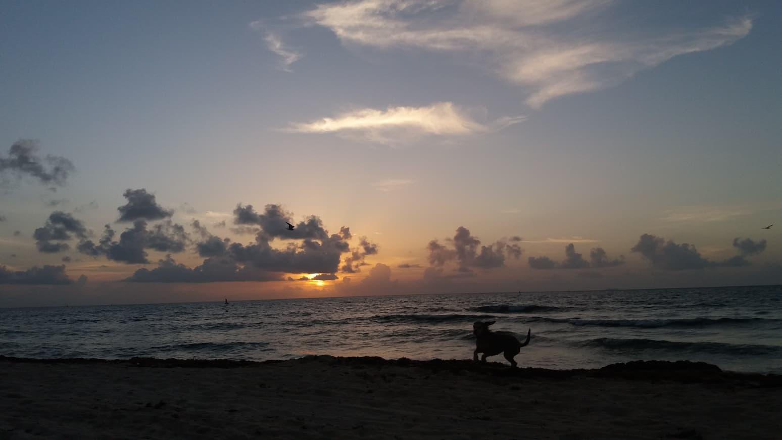 Malala durante el amanecer en Playa del Carmen