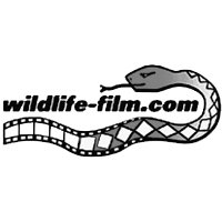 Wildlife Film